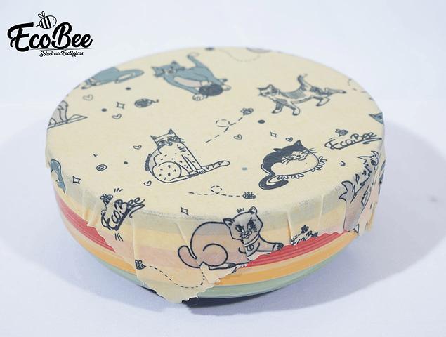 Diseño Gatos Ecobee (EB36)