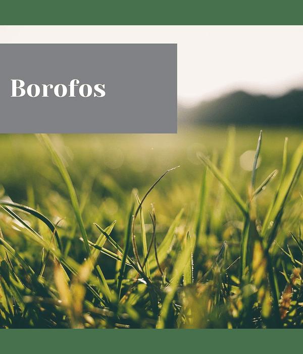 Borofos