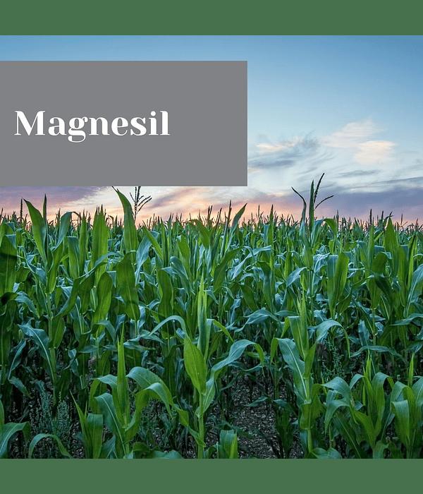 Magnesyl
