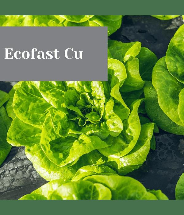 Ecofast Cu