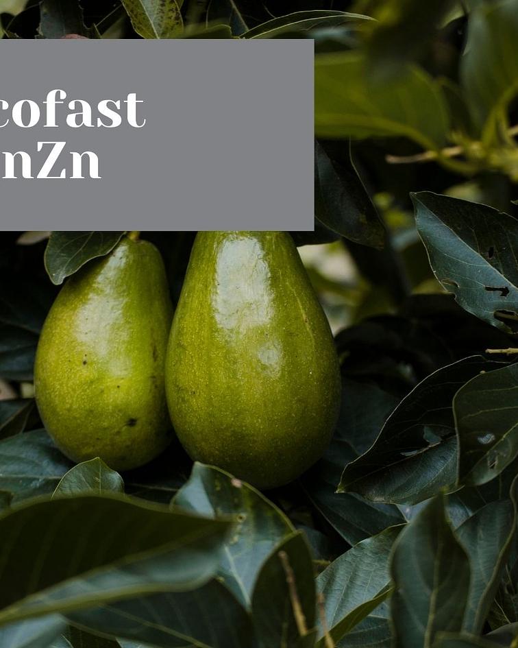 Ecofast MnZn