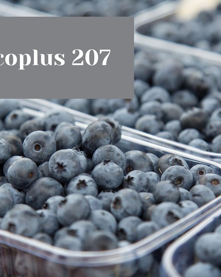 Ecoplus 207