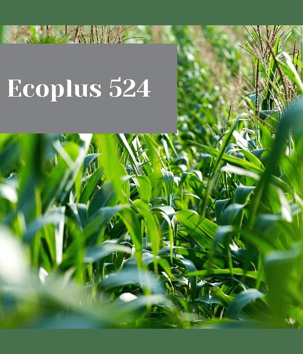 Ecoplus 524