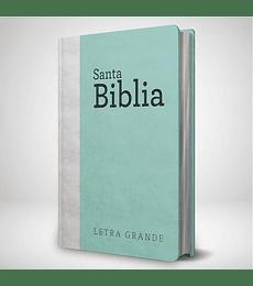 Biblia RVR 95 LG - Damas - Verde agua y gris claro