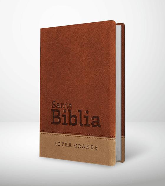 Biblia RVR 95 LG - Chocolate y gris