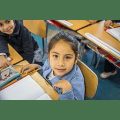 Taller práctico: Metodología para evaluar la lectura en 1° básico