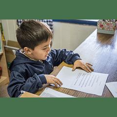 Taller práctico: Comprensión lectora. Estrategias para la sala de clases