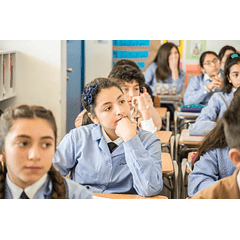 Taller práctico: Tomas decisiones a partir de los resultados de aprendizajes de tus estudiantes