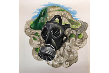 ILUSTREMOS LA CONCIENCIA: Campaña por la Descontaminación del Aire de Coyhaique