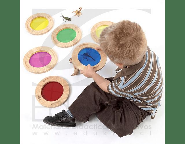 Bastidores colores traslúcidos 6 Uds.