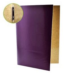 Carpeta Plastificada con Archivador Diferentes Colores Unidad