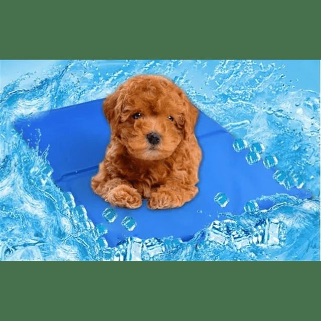 Manta Refrescante Md Pet Cool Mat Para Mascotas
