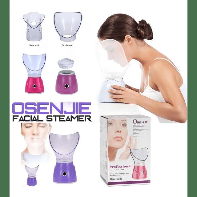 Vaporizador Facial Y Sauna Anti Acne Spa