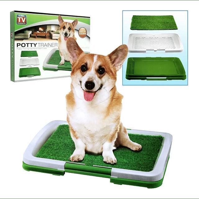 Baño Mascotas Ecológico Potty Trainer