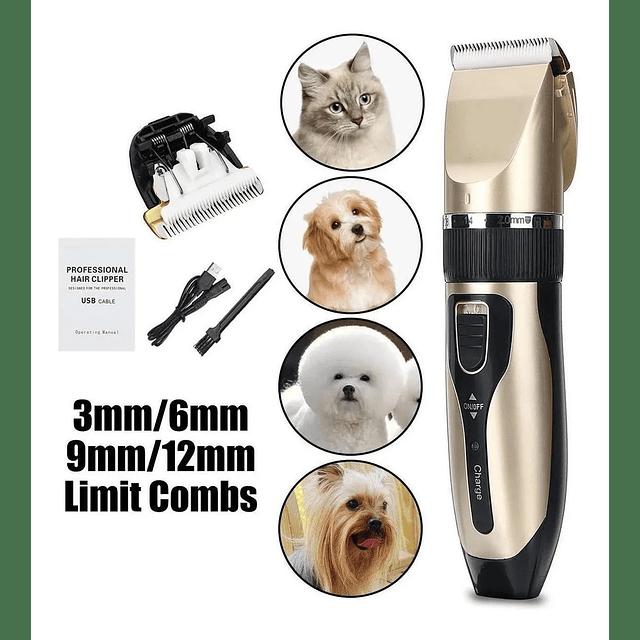 Set Peluquería Canina Maquina Cortar Pelo Mascotas Usb