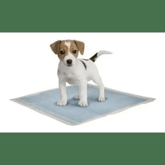 Pañales Entrenamiento Mascotas 60x45