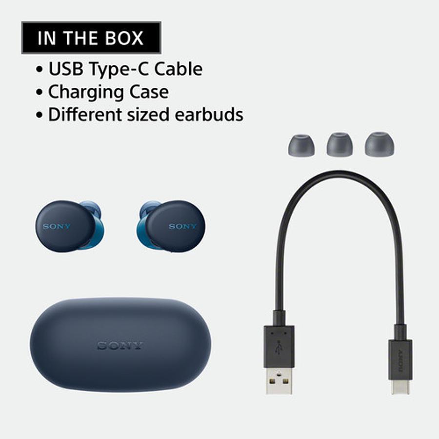 Sony WF-XB700 True Wireless In-Ear Headphones (Azul)