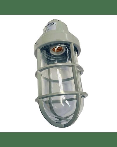 Lámparas a Prueba de Intemperie Cerradas y Selladas