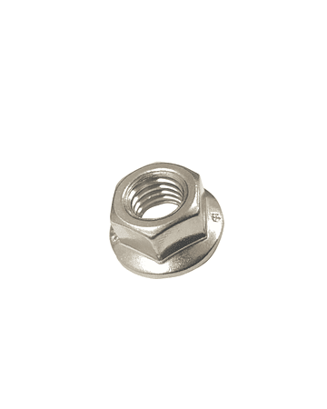 Hex Flange Nut, Serrated, SS M10