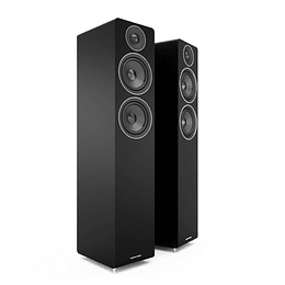 Parlantes Acoustic Energy AE109 Black