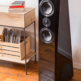 Parlantes SVS Ultra Tower (PAR)