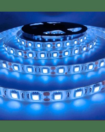 CINTA LED EXTERIOR 14.4W SMD 5050 60LEDs/m 5MT. 12V. LUZ FRÍA