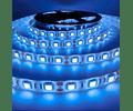 CINTA LED INTERIOR 14.4W SMD 5050 60LEDs/m 5MT. 12V. LUZ FRÍA