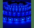 CINTA LED EXTERIOR 14.4W SMD 5050 60LEDs/m 5mt. 12V. AZUL