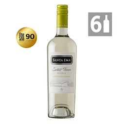 Pack 6 Sauvignon Blanc Select Terroir Reserva - Viña Santa Ema