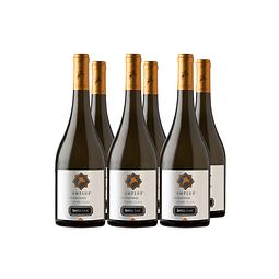 Amplus Chardonnay  Viña Santa Ema Caja de 6 botellas
