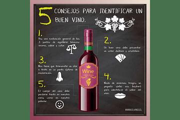 ¿Qué vino es mejor?