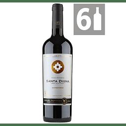 Pack 6 Carmenere Gran Reserva Santa Digna - Viña Miguel Torres