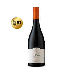 La Joya Syrah Gran Reserva - Viña Bisquertt