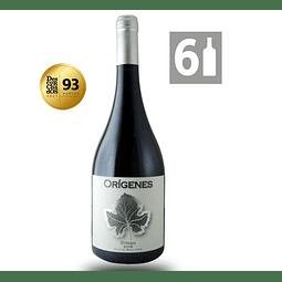Pack 6 Syrah 2019 - Orígenes Wine