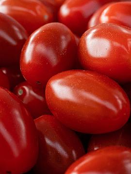 Tomate Pomarola