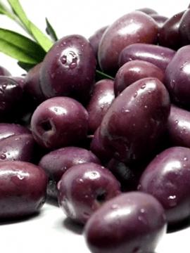 Aceituna Azapa morada
