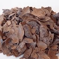 Té de Cacao Orgánico