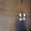 Aro Triángulo con Perla