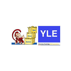 Curso Cambridge Young Learnes (YLE)