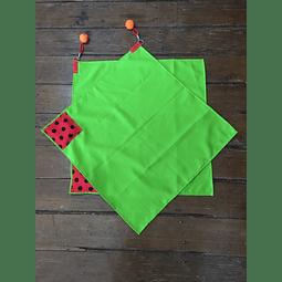 Banderas Verde Pistacho