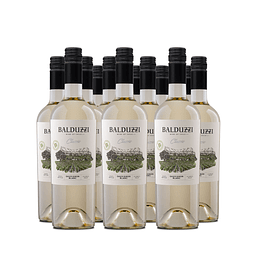 Caja 12 bot. Classic Sauvignon Blanc 2020