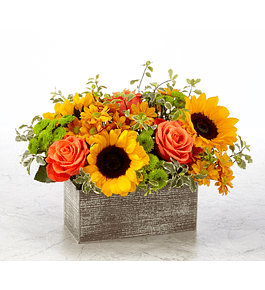 Girasoles y rosas en base rectangular