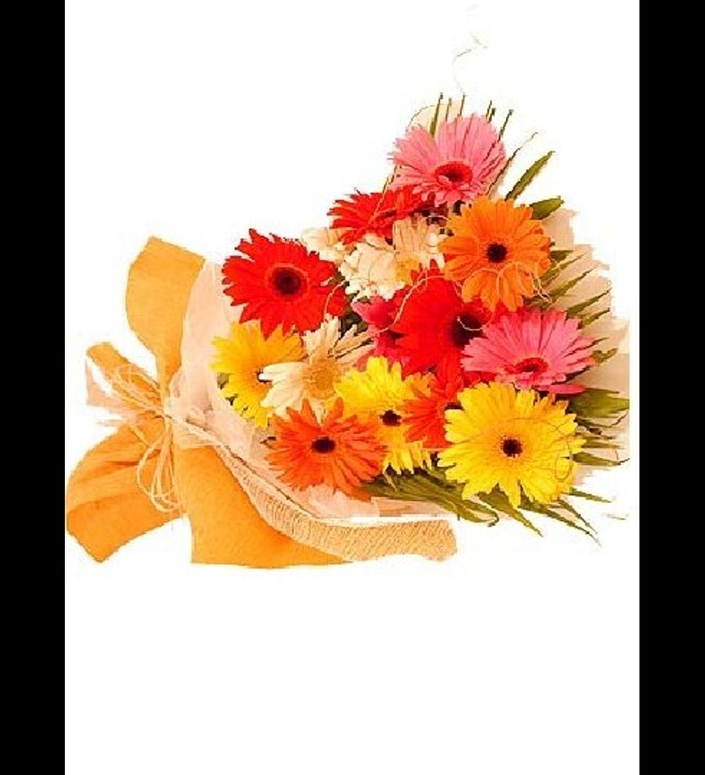 Bouquet de 15 Gerberas