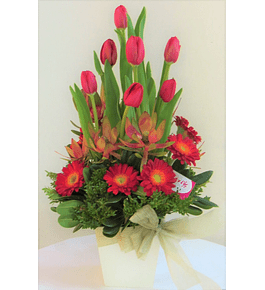 Armonia de Tulipanes y Gerberas