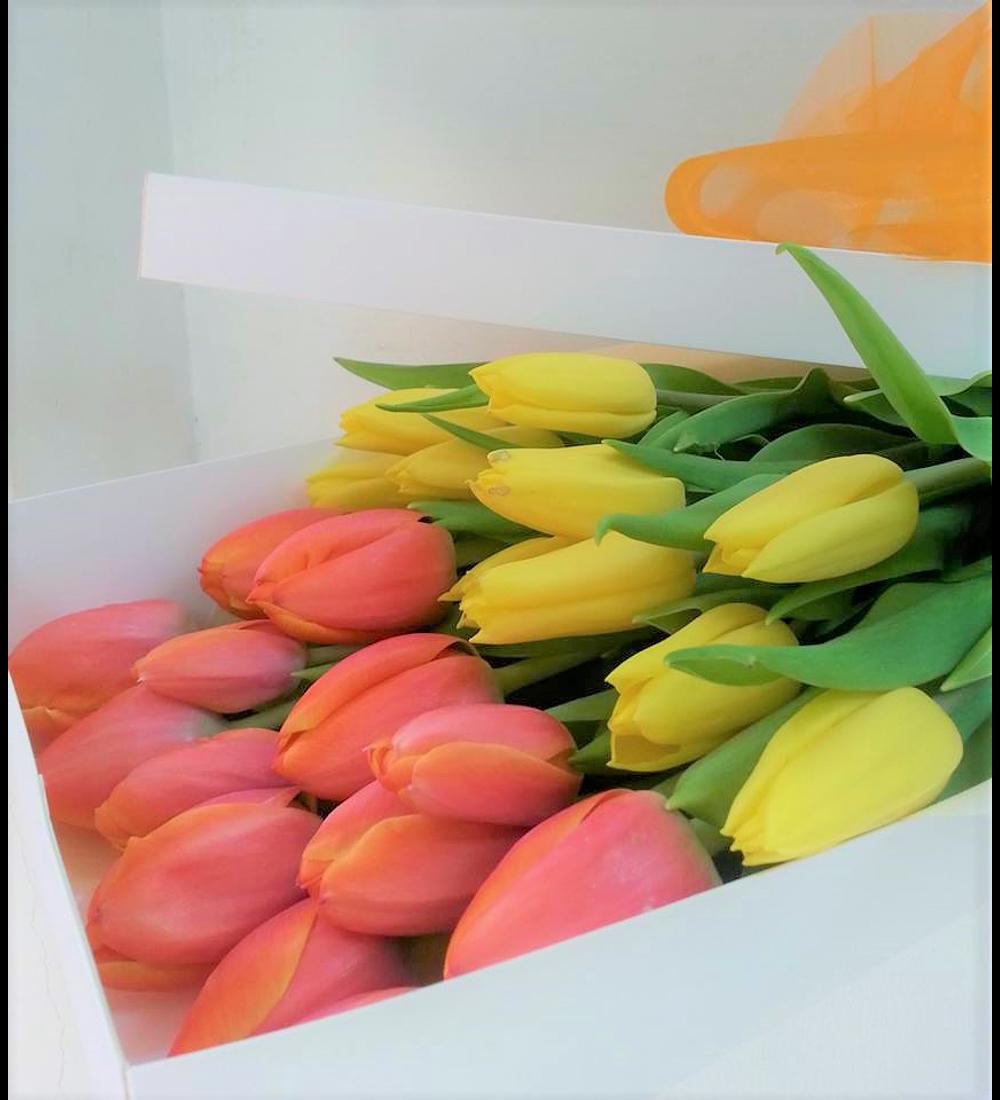 Caja 20 Tulipanes