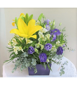 Caja de Color en Lisianthus y Liliums