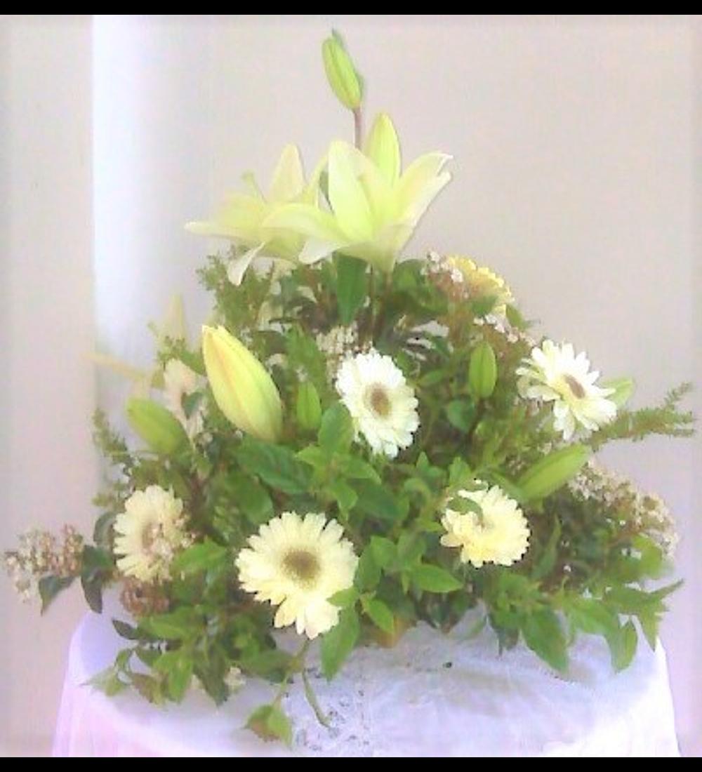 Arrimo Flores Mixtas