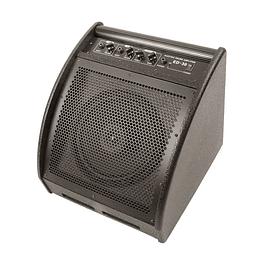 Amplificador Batería 30 Watts