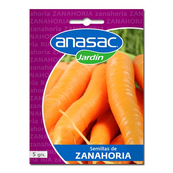 SEMILLA ZANAHORIA (5 g)