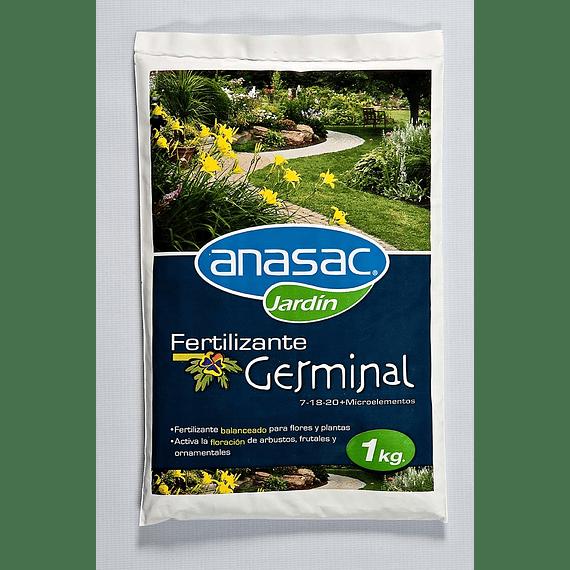FERTILIZANTE GERMINAL (1 KG)